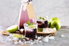 刷新的鸡尾酒用黑莓和淡紫色 免版税库存照片