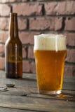 刷新美国贮藏啤酒会工艺的人啤酒的寒冷 免版税库存照片