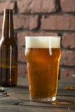 刷新美国贮藏啤酒会工艺的人啤酒的寒冷 库存图片