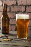 刷新美国贮藏啤酒会工艺的人啤酒的寒冷 免版税库存图片