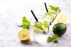 刷新非酒精mojito柠檬水饮料两块玻璃用有机柠檬,石灰切片,薄荷叶,秸杆,在gr的冰块 库存照片