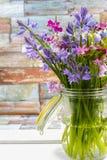 刺激与新鲜的五颜六色的花束春天森林花和hyacin 库存照片