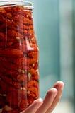 刺激用许多干红色蕃茄、橄榄和香料在人` s手上有拷贝空间的在被弄脏的自然绿色背景关闭 库存图片