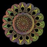 刺绣蔓藤花纹坛场样式 传染媒介五颜六色的挂毯花卉回合佩兹利装饰品 Grunge?? 被绣的花 库存例证