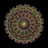 刺绣蔓藤花纹坛场样式 传染媒介五颜六色的挂毯花卉回合佩兹利装饰品 Grunge?? 被绣的花 皇族释放例证