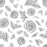 与玫瑰的黑白无缝的样式 向量例证