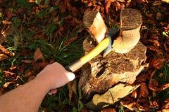 剁木头 免版税库存图片