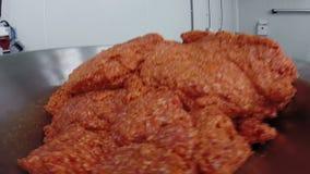 剁碎的猪肉和香料混合物 股票录像