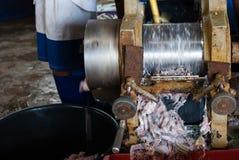 剁碎的鱼 免版税库存照片
