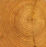 削减木的纹理 免版税库存照片