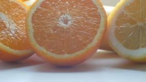 削减柑橘柠檬和橙色特写镜头视图关闭在白色背景 影视素材