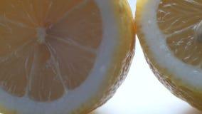 削减柠檬看法的宏指令关闭在白色背景 影视素材