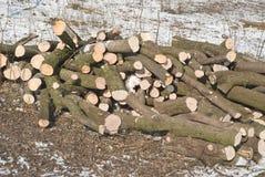 削减热化木料冬天 免版税库存图片