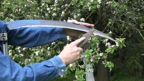 削尖大镰刀工具在春天农厂庭院里 股票视频