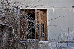 削皮墙壁和残破的视窗快门 图库摄影