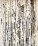 削皮油漆木表面 库存照片