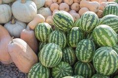 前假日五颜六色的南瓜和西瓜显示在农夫市场上 免版税库存照片