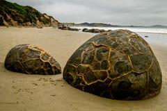 60前冰砾凝固物形成了百万moeraki新的otago septarian球状年西兰 免版税图库摄影