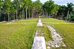 前咖啡农场,布埃纳文图拉, Las Terrazas,赞成Pinar del里约 免版税图库摄影
