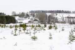 前天在领域的冬天 免版税库存照片