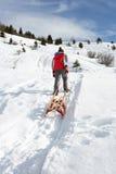 前拉雪撬雪的男孩青少年 库存照片