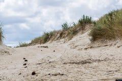 前景聚焦了沙丘道路在海滩 免版税图库摄影