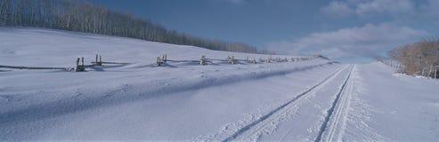 前条美元路,在雪包括的CO 库存照片