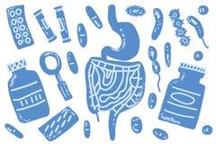 前生命期的传染媒介概念例证 食道植物群 皇族释放例证