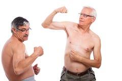前辈比较肌肉 免版税库存照片