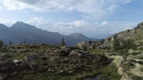 前进在清楚的蓝色湖和松木上在日落夏日 欧洲意大利阿尔卑斯瓦尔d `奥斯塔室外绿色 影视素材