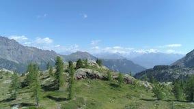前进在清楚的蓝色湖和松木上在晴朗的夏日 欧洲意大利阿尔卑斯瓦尔d `奥斯塔室外绿色 股票视频