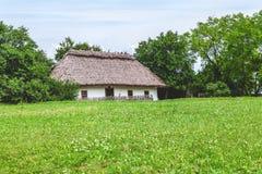 前面小屋的绿色草坪与茅屋顶 免版税库存照片
