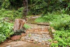 前面或后院,石材料,规则式园林,楼梯,步 免版税库存照片