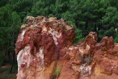 前面的茶黄猎物在Roussillon,法国 免版税库存照片