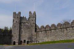 剑城堡都伯林爱尔兰 库存图片