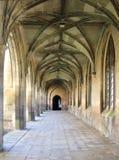 剑桥学院 库存照片