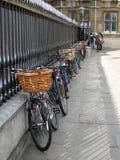 剑桥 库存图片