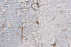 剥在木墙壁上的白色油漆纹理  与破旧的材料的表面 免版税库存照片