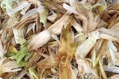 剥玉米背景壳 免版税图库摄影