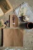 剥皮位置、干燥标本集的顶视图,干淡紫色花、笔记本、书笔记的,笔和春天夏天图片在concret 图库摄影