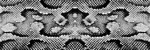 剥皮蛇水蟒纹理样式蟒蛇黑色白色 皇族释放例证