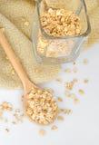剥落木燕麦的匙子 免版税库存图片