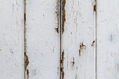剥落的白色格子篱芭外套 图库摄影