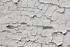 剥落的老油漆 免版税库存图片