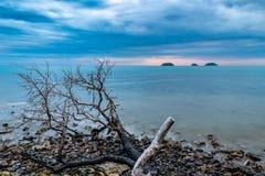 剧烈的天空和海洋长的曝光照片在一个海滩的日落蓝色小时在Ko张,泰国 免版税库存图片