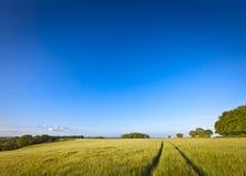 剧烈的天空,田园诗农村风景, Cotswolds英国 免版税库存照片