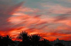 剧烈的日落在城市 库存照片