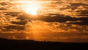 剧烈的日落在暴风云和在植物的树和管子 时间间隔 股票视频