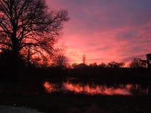 剧烈的日落在有树剪影的一个湖反射了  免版税库存图片