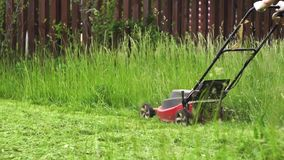 剪与电割草机的草接近的射击  股票视频